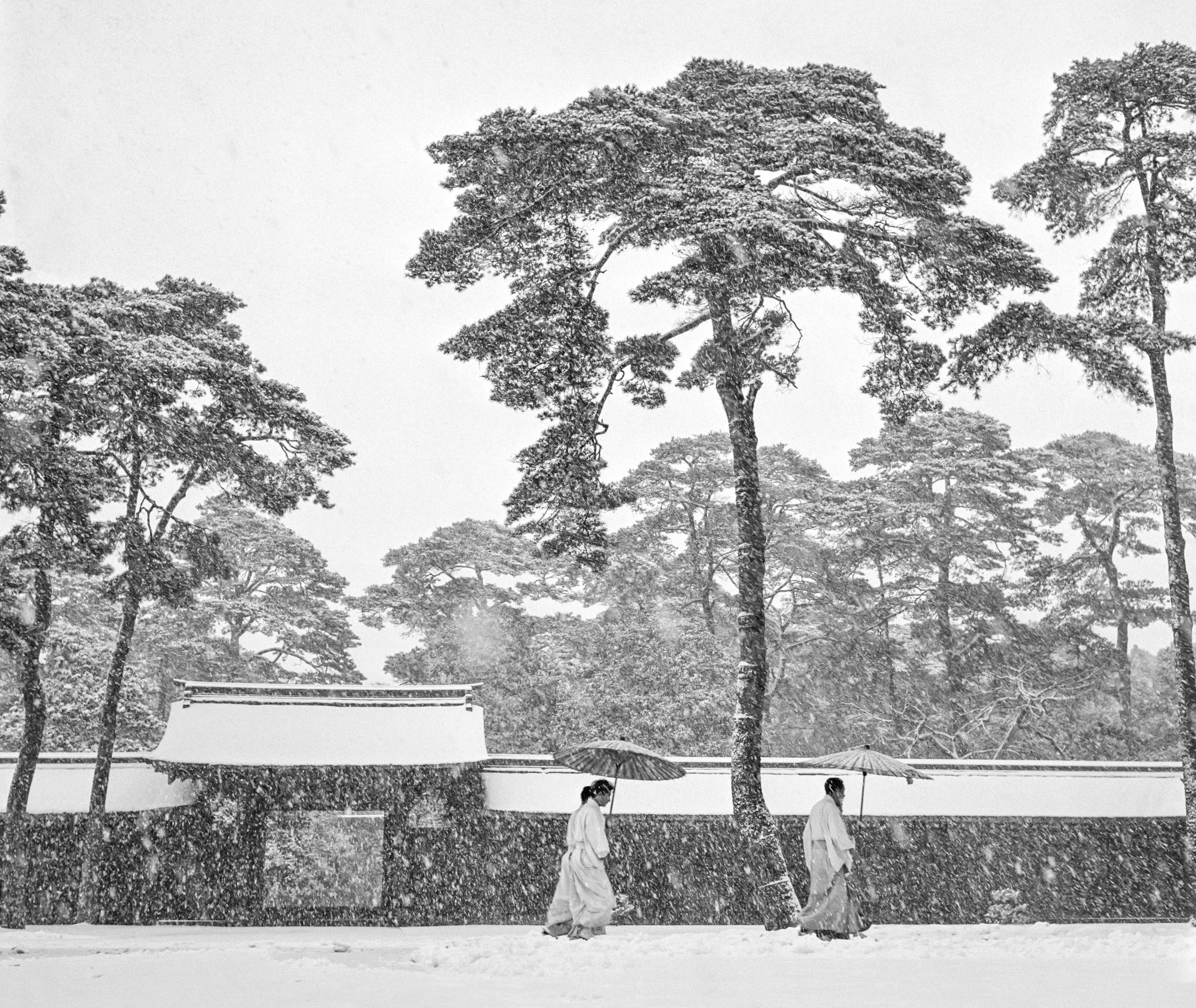 Japan Tokyo Courtyard Of The Meiji Shrine 1951