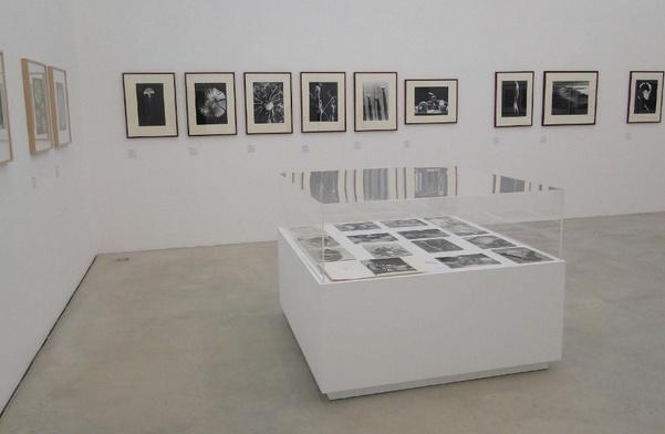 Bild Ausstellung I 1